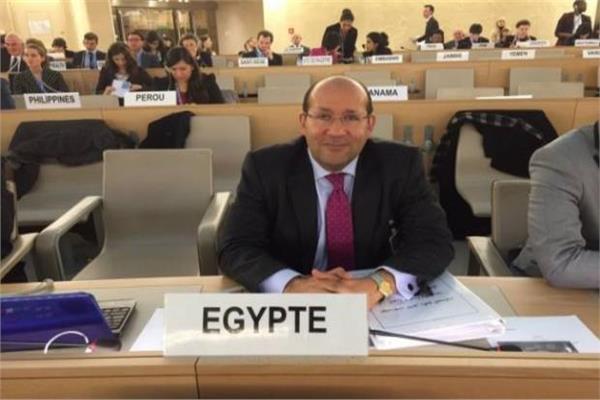 السفير هشام بدر سفير جمهورية مصر العربية