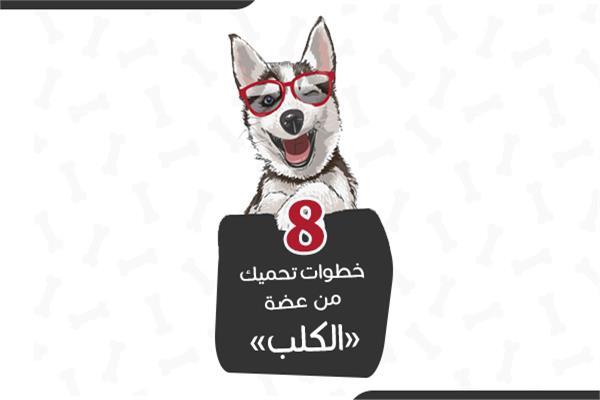 إنفوجراف | 8 خطوات تحميك  من عضة «الكلب»