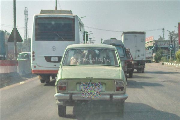 الجاموسة في المقعد الخلفي لسيارة ملاكي