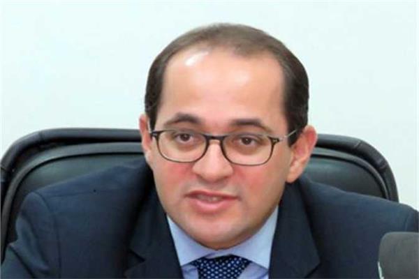 نائب وزير المالية للسياسات المالية أحمد كجوك