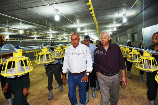 محافظ أسوان ورئيس الشركة يتفقدان مشروع الدواجن
