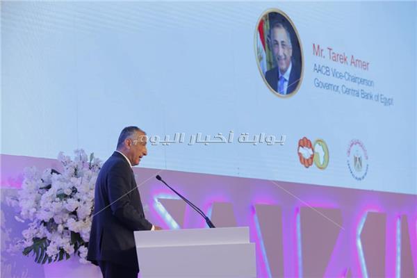 طارق عامر، محافظ البنك المركزى المصرى