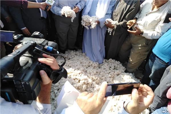 وزير الزراعة يفتتح موسم حصاد القطن من محافظة الفيوم