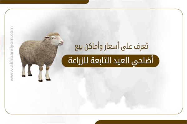 تعرف على أسعار وأماكن بيع أضاحي العيد التابعة للزراعة