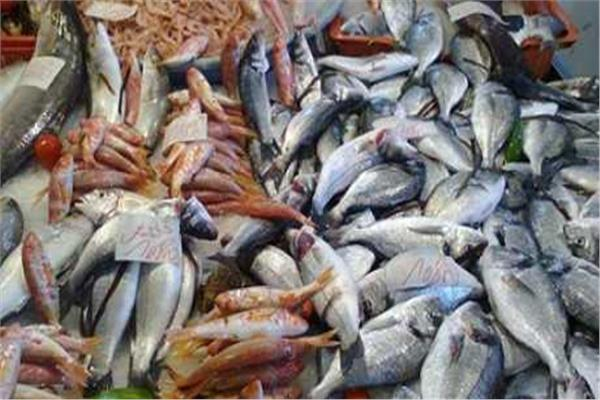 أسعار الأسماك بسوق العبور في أول أيام عيد الأضحى المبارك
