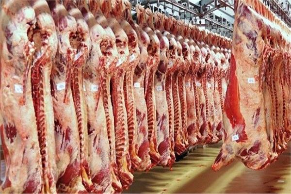 ثبات في أسعار اللحوم داخل الأسواق اليوم