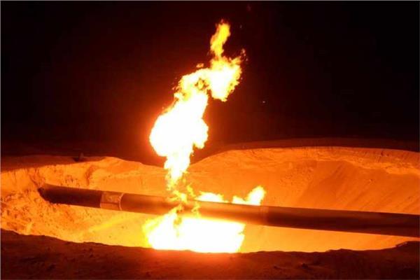 يونيون فينوسا الإسبانية: نجري محادثات مع مصر لإعادة تشغيل محطة تسييل الغاز