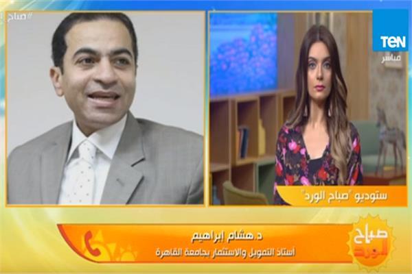 أستاذ التمويل والاستثمار بجامعة القاهرة الدكتور هشام إبراهيم