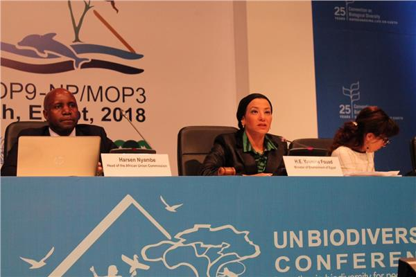 وزيرة البيئة تستعرض نتائج اليوم الأول للقمة الوزارية الإفريقية