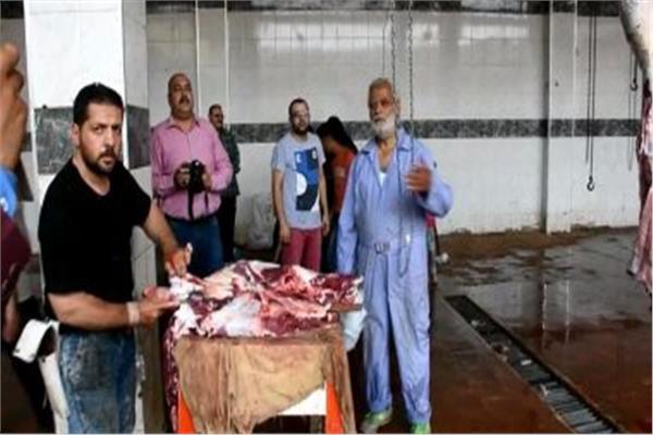 مجازر الطب البيطري بمحافظة الشرقية