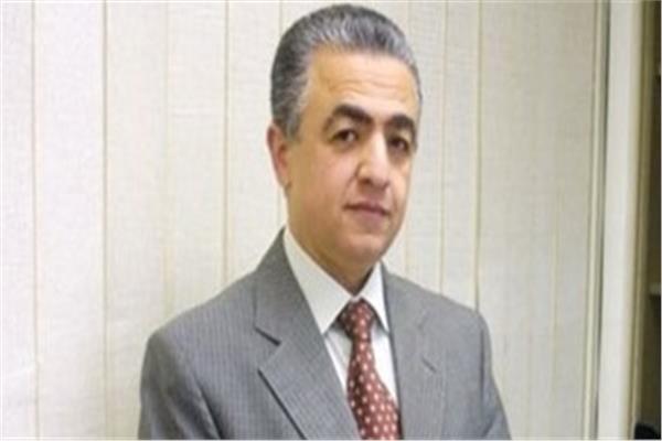 الدكتور سعيد المصرى