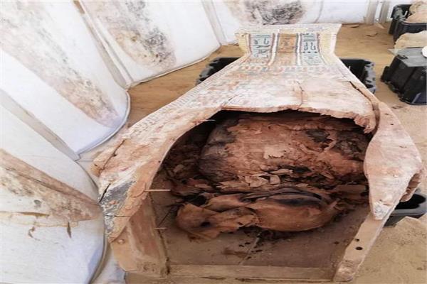 الكشف عن بئر دفن به بقايا تماثيل من عصر الدولة الوسطى