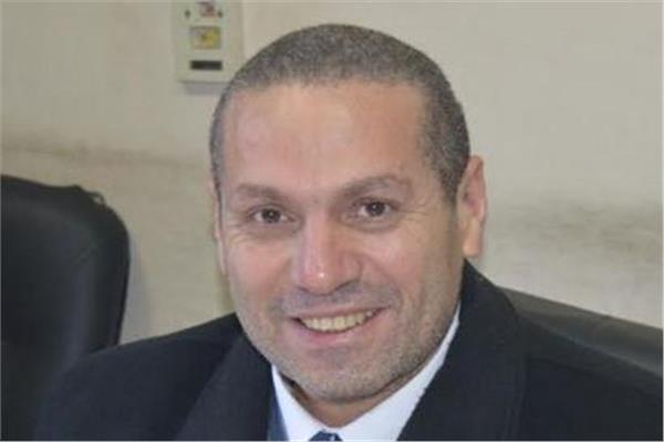 المستشار سامح عبد الله رئيس المحكمة