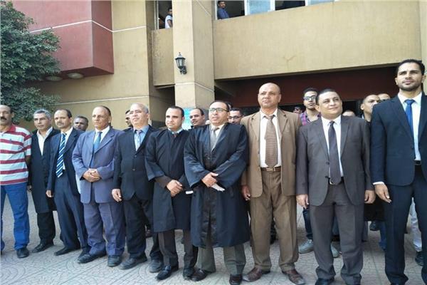 المنيا تستعيد 572 فدانا بعد إزالة التعديات على الأراضي الزراعية