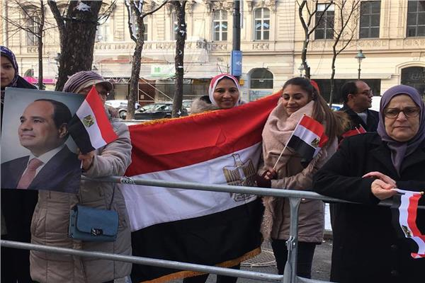 الجالية المصرية في النمسا تحتفل بوصول الرئيس السيسي