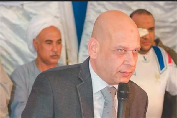 محمد هانى الحناوى عضو مجلس النواب