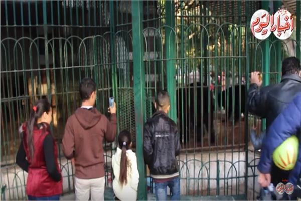 إقبال كبير على حديقة الحيوانات في العيد