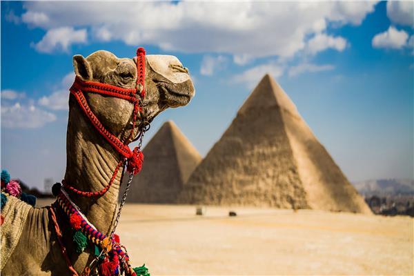 القاهرة وواشنطن وليون.. ضمن أفضل 10 وجهات سياحية في 2019