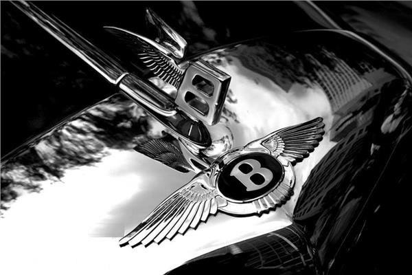حرف B الطائر من بنتلي