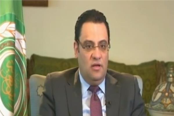 السفير محمود عفيفى