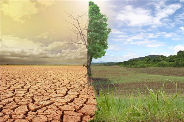الزراعة» تنظم حزمة دورات تدريبية للتعامل مع التغيرات المناخية وآثارها