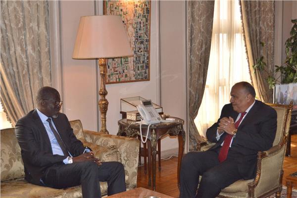 سامح شكري يستقبل الأمين العام للاتحاد الدولي لجمعيات الصليب والهلال الأحمر