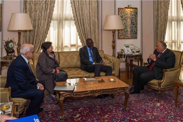 جانب من استقبال وزير الخارجية لأمين عام الاتحاد الدولي للصليب الأحمر