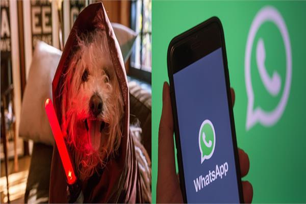 """واتساب - كلب الملياردير """"مارك زوكربرج"""""""
