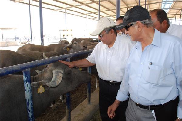 وزير الزراعة خلال زيارة سابقة لمشروع غرب غرب المنيا