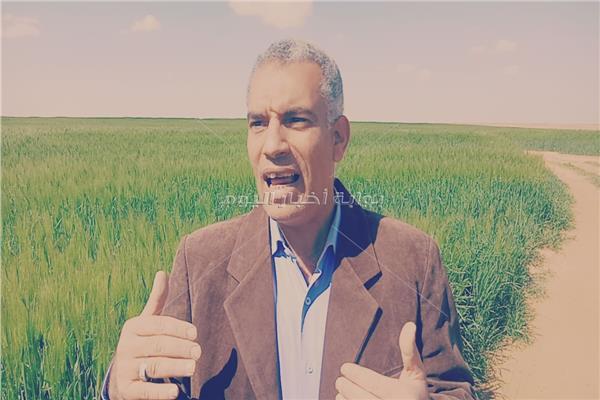 د. أيمن عبد العال رئيس قطاع الإنتاج والمدير التنفيذي لمشروع استصلاح الـ20 ألف فدان غرب المنيا