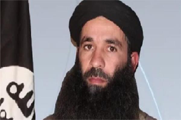وزارة الدفاع الفرنسية: القوات قتلت إسلاميًا متشددًا بارزًا في مالي