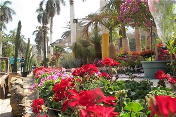 جانب من معرض زهور الربيع
