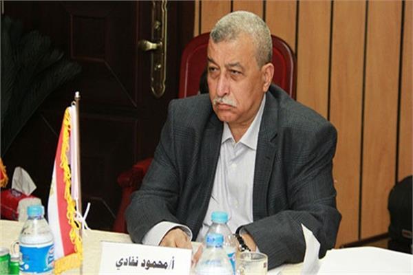محمود نفادي المتحدث باسم تحالف الأحزاب المصرية