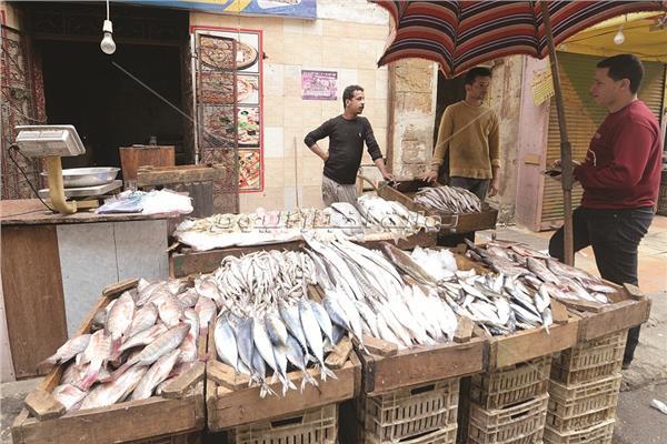 أسواق السمك تبحث عن الزبائن - تصوير أيمن حسن