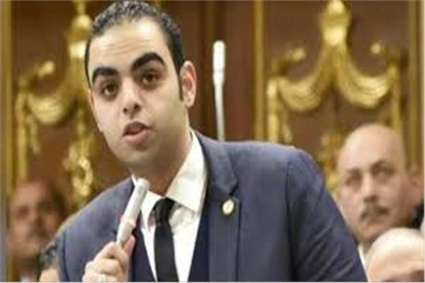 النائب حسن عمر حسنين