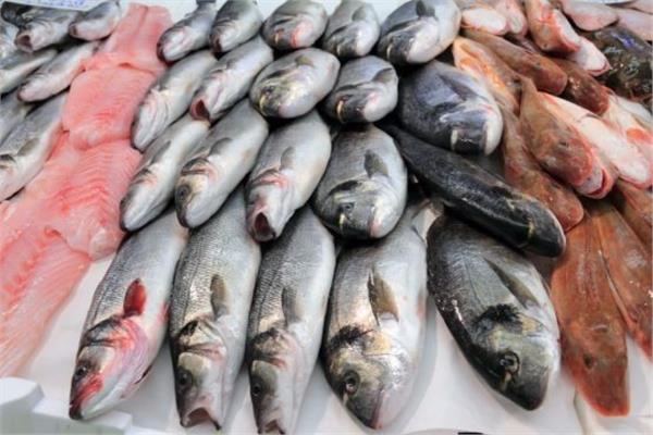 أسعار الأسماك في سوق العبور اليوم ٢١ أبريل -أرشيفية