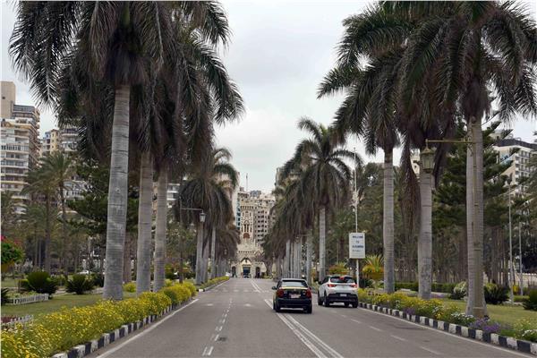 الاسكندرية تستعد لشم النسيم