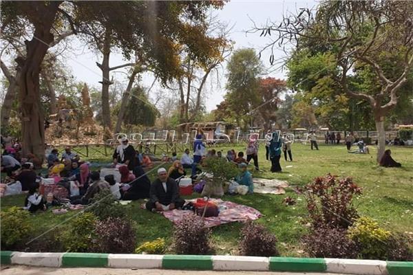 شم النسيم 2019  الفسيخ والرنجة يغزو حدائق القناطر الخيرية احتفالا بأعياد الربيع
