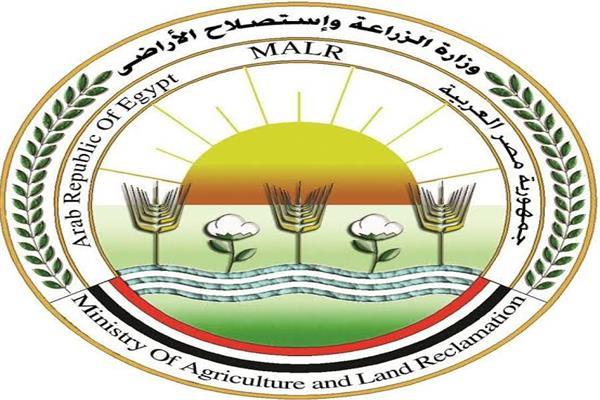 الزراعة تكليف «أحمد عوض» مديرا لصندوق الموازنة الزراعية