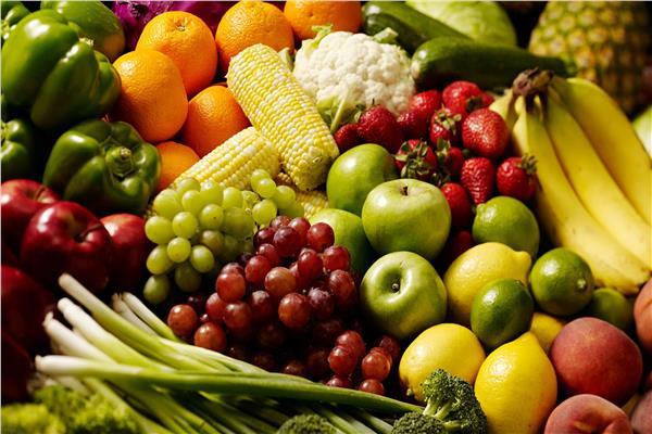 دراسة ..النظام الغذائي منخفض الدسم يساعد في الوقاية من سرطان الثدي