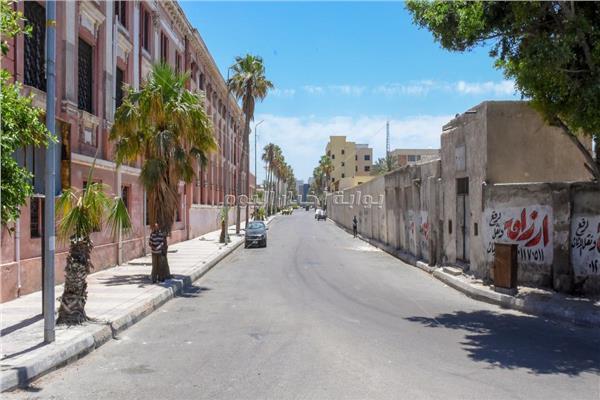 بدء التجهيز والتجميل لـ «شارع 306» وشكل ومساحة عربات الطعام بالإسكندرية