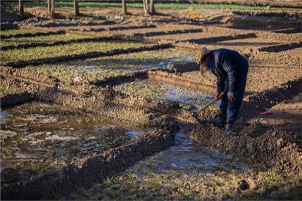 الطرق البديلة الحل الأمثل لمواجهة ندرة المياة والحفاظ على الرقعة الزراعية