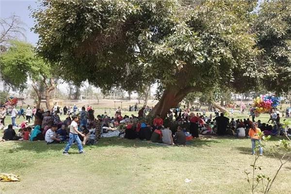 القليوبية ترفع حالة الطواري.. والقناطر تتزين قبل عيد الفطر المبارك