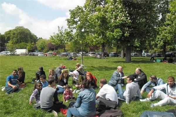 «الرنجة» تنتشر داخل حدائق القناطر الخيرية لليوم الثاني