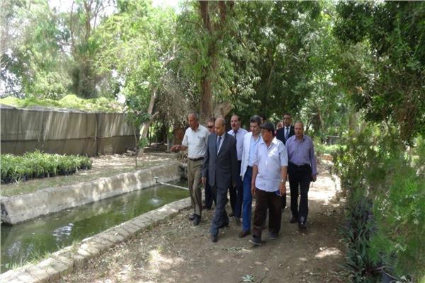 رئيس جامعة المنيا يشهد حصاد المزرعة السمكية بالمشتل التعليمي
