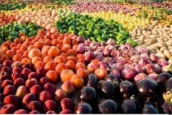 صادرات مصر الزراعية