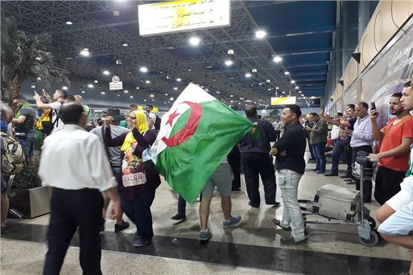 فيديو|جزائريون في مصر.. كشري وأهرامات والعودة بالكأس