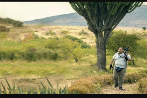 الحياة البرية في مصر