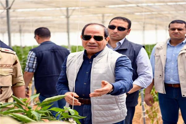 «الرئاسة» تنشر فيديو لتفاصيل افتتاح السيسي لمشروعات الصوب الزراعية