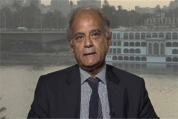 مساعد وزير الخارجية الاسبق السفير حسين هريدي